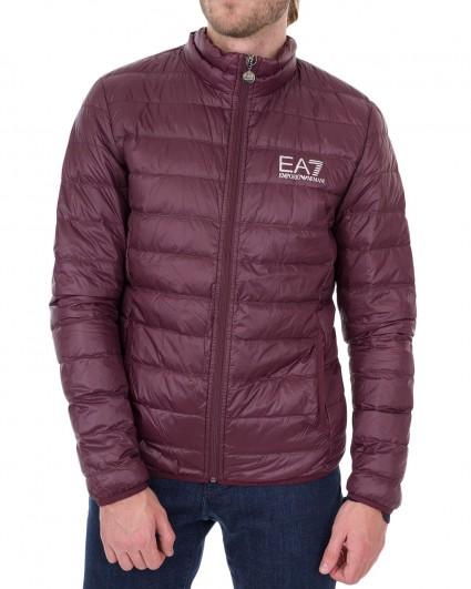 Куртка мужская 8NPB01-PN29Z-1492/19-20