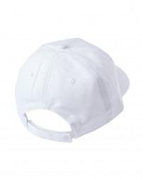 Картуз чоловічий 4280-100-white/21 (5)